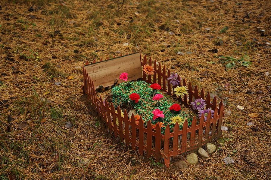 je hond begraven in de tuin of op een dierenbegraafplaats
